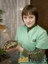 Лечение рептилий в Москве.