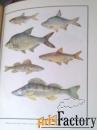 Книги для любителей рыбалки.