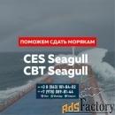 Помощь Seagull CES, Seagull CBT и сдача других тестов для моряков.