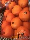 Продаем апельсин