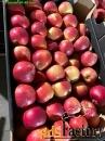 Продаем яблоки