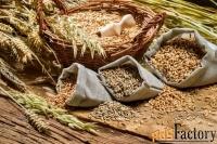комбикорм зерно корма