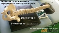 тренажер грэвитрин - мини orto для лечения шеи