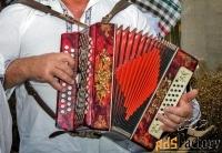 обучение игре гармонь баян гитара саксофон флейта