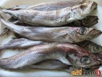рыба морская в нижнем новгороде