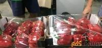 продаем перец