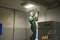 обработка от лишая, вирусов, бактерий холодным туманом