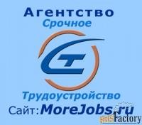 подбираем и предлагаем нужную вам работу