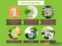 оборудование для производства сока ростков пшеницы