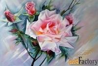 картина маслом на холсте «нежная роза»