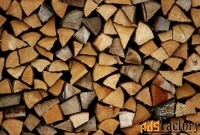 дрова колотые уложенные берёза, осина, ель, дуб. уголь.