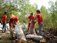 уборка территории от мусора, хлама. самосвалы. рабочие.