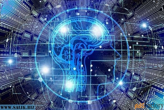 Системный продукт восстановительной IT-медицины/Эксклюзив