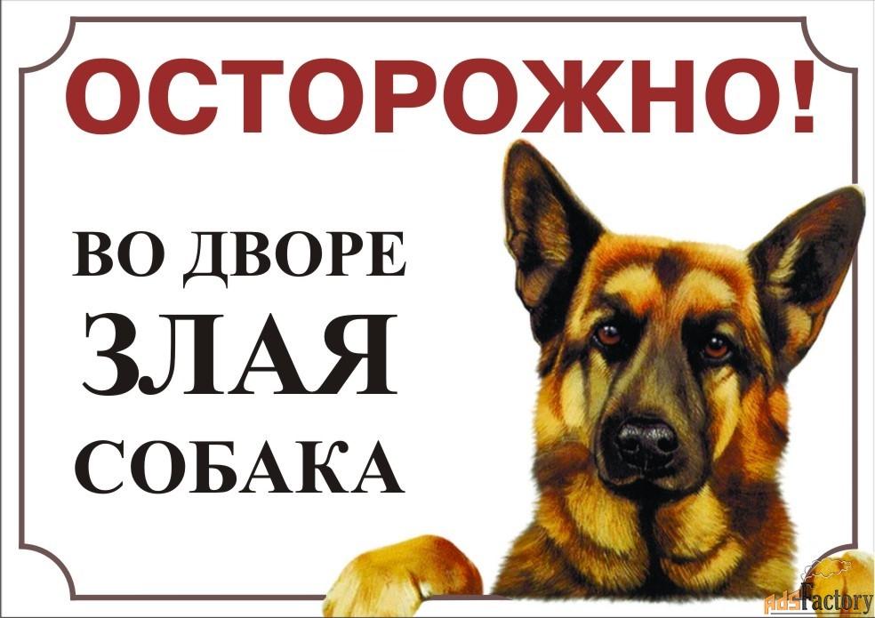 Таблички Злая собака и видеонеблюдение