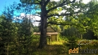 шикарный участок под застройку на лесной поляне
