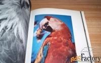 книга птицы дальних стран