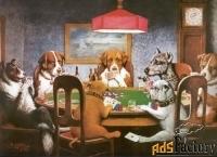 картина «собаки играют в покер «помощь другу»