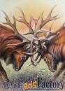 картина «оленья схватка»