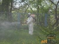 санобработка от тараканов, клопов, обработка деревьев, от мышей и крыс