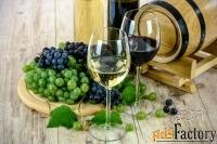 ферма с производством вина и оливкового масла в тоскане, италия