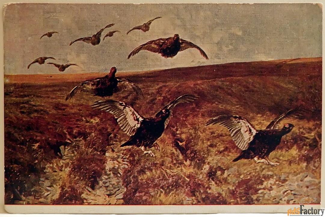 открытка. блинкс шотландские граусы. 1930-е годы