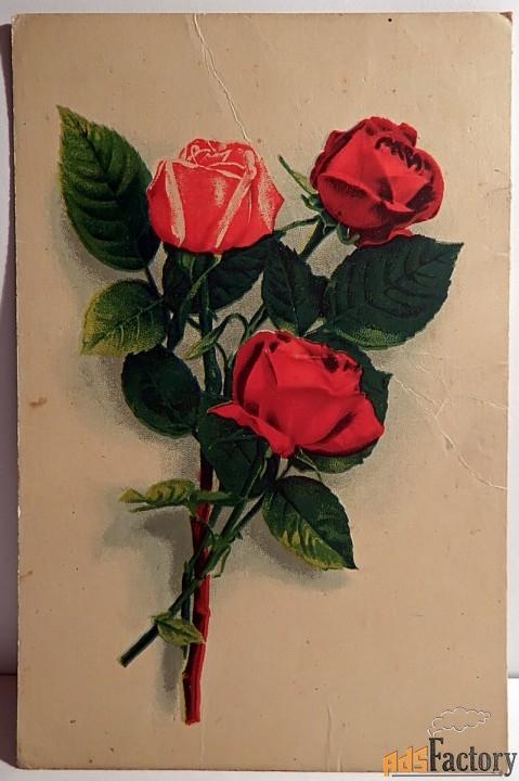 Открытка Розы. Типолитография. Рига. 1950 год