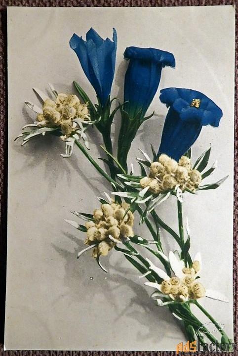 Антикварная открытка Букет
