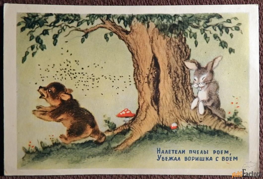 Открытка. Худ. Ушакова Мишка и пчелы. 1954 год
