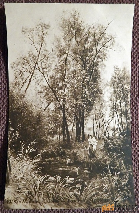 Антикварная открытка Болото