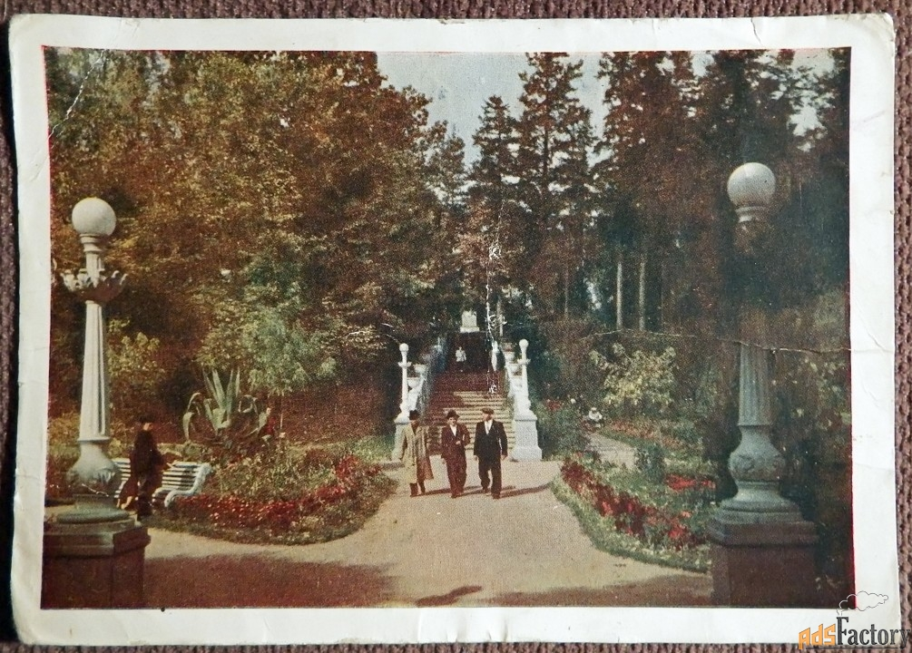 Открытка Трускавец. Парк. 1958 год