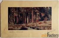 антикварная открытка. и. шишкин корабельная роща