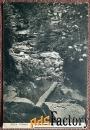 антикварная открытка ручей дрозда. саксонская швейцария (германия)