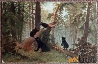 антикварная открытка. и. шишкин утро в сосновом лесу