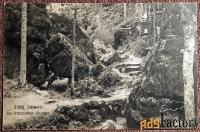 антикварная открытка «саксонская швейцария. путь в уттевальде»