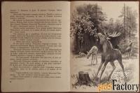Книга. Е. Сурова Прогулка с лосями. 1976 год