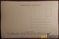 Открытка Котята в корзинке. 1956 год