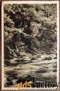 Антикварная открытка Германия. Долина Боде
