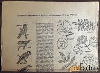 Выкройки. Женская одежда. Приложение к журналу Работница. 1970 год