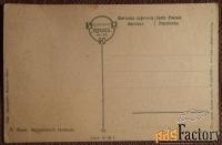 Антикварная открытка Курляндский легавый