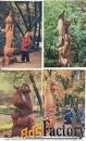 набор открыток деревянная сказка