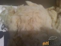 продажа мытой шерсти