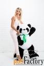 панда среднеформатная великая