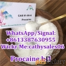 factory supply procaine hcl/procaine hydrochloride powder cas 51-05-8